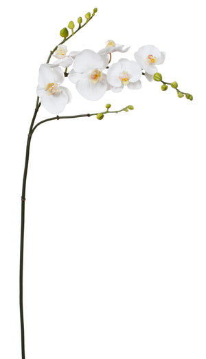 "37"" White Phalaenopsis Orchid Spray #95273-WW"