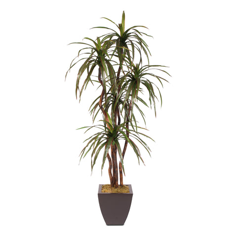 6 Feet Silk Yucca Tree with Natural Wood Trunks in a Metal Pot #97