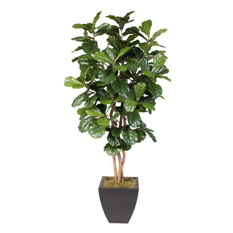 7'H Artificial Silk Fiddle Leaf Tree with Real Wood Trunks in a Brown Metal Planter #T-99
