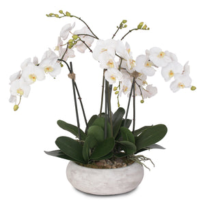 Two Tone White Silk Phalaenopsis Orchids with Reindeer Moss and Bamboo Pole in Stone Wash Round Pot #F-102
