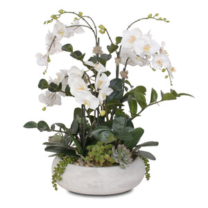F-106 Stunning Two Tone White Silk Phalaenopsis Orchids with Succulents and Silk ZZ Plant in Wash Stone Round Pot