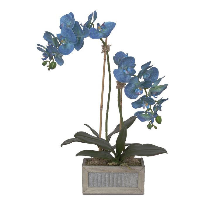 Jenny Silks Real Touch Blue Phalaenopsis Orchids Flower Arrangement in  Rectangular Metal Gray Wood Pot #F-125