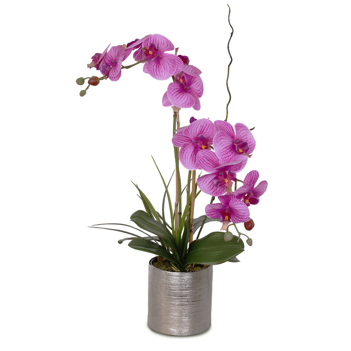 Jenny Silks Real Touch Fuchsia Purple Phalaenopsis Orchids Flower Arrangement in Etched Silver Cylinder Ceramic Pot #F-127