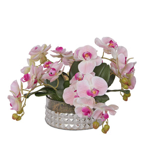 Pink Orchid in Sliver Glass Round Bowl #F-128