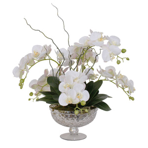 Jenny Silks Real Touch White Phalaenopsis Orchids Flower Arrangement in Round Silver Glass Pedestal Bowl #F-129