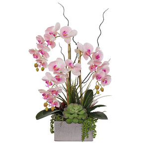 Jenny Silks Real Touch Pink Phalaenopsis Orchids and Succulents Flower Arrangement in Square Sliver Etched Ceramic Pot #F-132