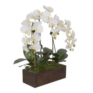Jenny Silks Real Touch White, Pink Accent Phalaenopsis Orchids with Artificial Moss Flower Arrangement in Rectangle Wood Planter #F-135