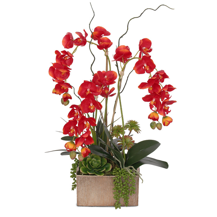 Jenny Silks Real Touch Red Phalaenopsis Orchids, Succulents and Curly Willow Flower Arrangement in Square Gold Etched Ceramic Pot #F-141
