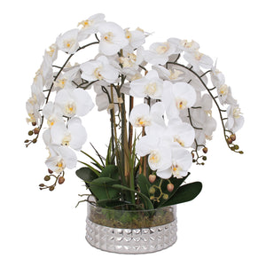 Jenny Silks Real Touch White Phalaenopsis Orchids and Leaves Flower Arrangement in Round Sliver Diamond Cut Glass Bowl #F-145
