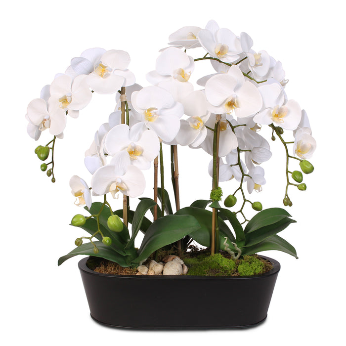 Real Touch White Phalaenopsis Orchids in an Oval Metal Planter #F-23