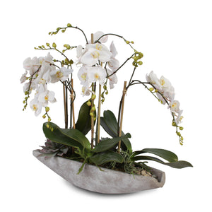 F-38 Real Touch White Phalaenopsis Orchids in Stone Bowl