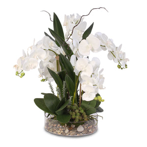 Real Touch White Phalaenopsis Orchid with Succulents and Natural Rocks in a Glass Bowl #F-4W