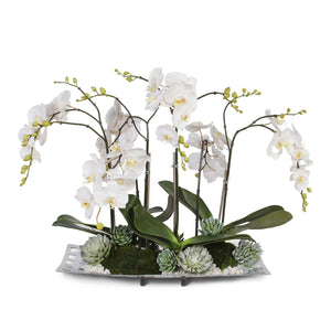 Real Touch White Phalaenopsis Orchids with Succulents and Pebbles in Aluminum Tray #F-55