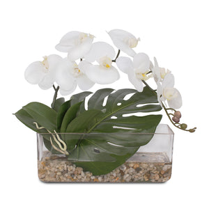 Real Touch White Phalaenopsis Orchid and Artificial Philo Leaf with Natural Pebbles mix with Artificial Water in Glass Vase #F-93