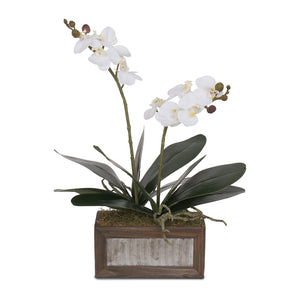 Real Touch White Silk Phalaenopsis Orchids and Leaves in Metal Wood Pot #F-95