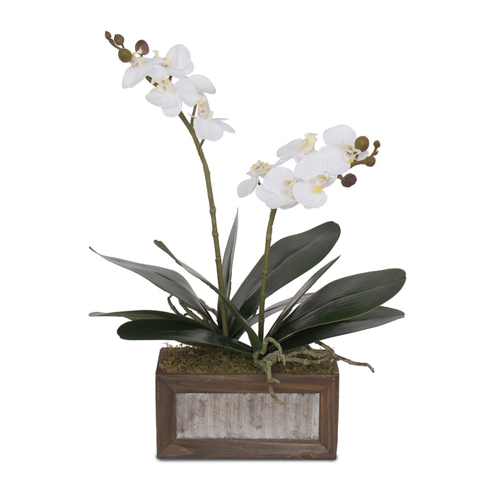 F-95 Real Touch White Silk Phalaenopsis Orchids and Leaves in Metal Wood Pot