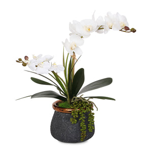 Real Touch White Silk Phalaenopsis Orchids and Leaves with String of Pearls in Ceramic Pot #F-97