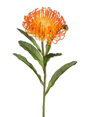 Open Needle Protea Spray (6 Stems Total) #FSP752-OR
