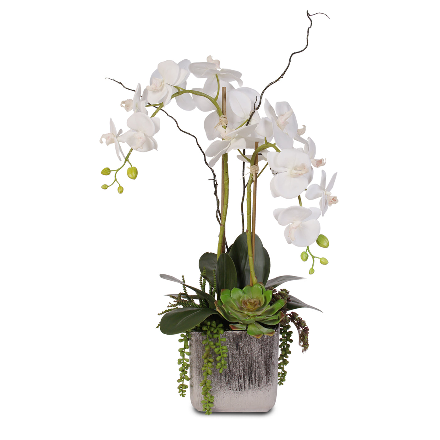 Real Touch White Orchid And Succulent Arrangement Js05 Jenny Silks