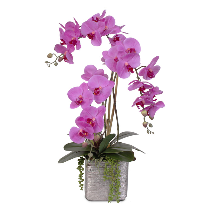"""Real Touch"" Purple Beauty Orchid and Succulent Arrangement #JS07"