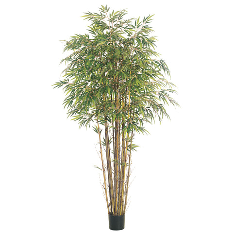 Natural Trunk Bamboo Tree #LPB157-GR/TT