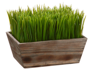 Grass in Wood Planter Green #LPG262-GR