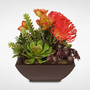 Contemporary Tropical Succulent Arrangement in a Metal Container #OS-11