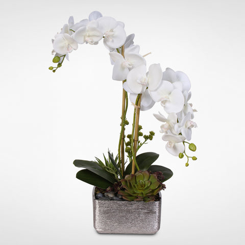 Real Touch White Phalaenopsis Orchid with Succulents in a Silver Ceramic Pot #OS-14