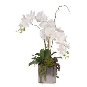 Real Touch White Phalaenopsis Orchids With Succulents in Silver Ceramic Pot #OS-17