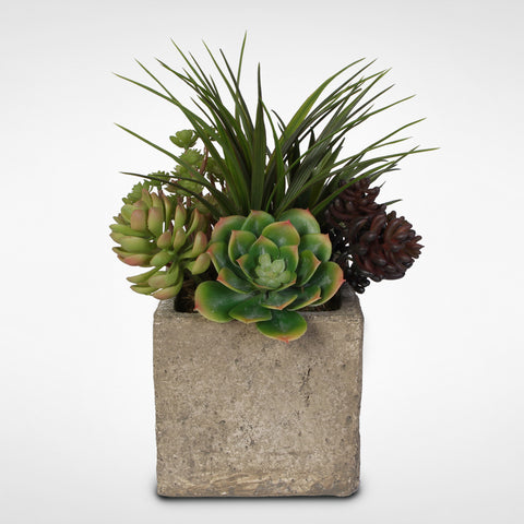 Artificial Succulent and Grass Arrangement in a Concrete Cube Pot #OS-20