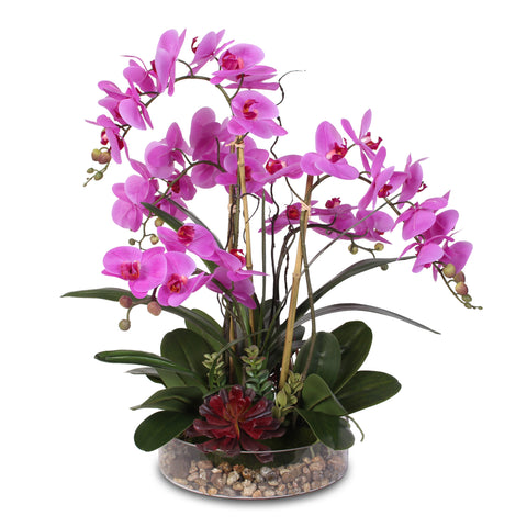 Real Touch Purple Phalaenopsis Orchid with Succulents and Natural Rocks in Glass Pot #OS-29