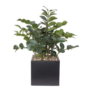 Artificial Zamioculcas Plant with Rocks in Black Metal Pot #P-10