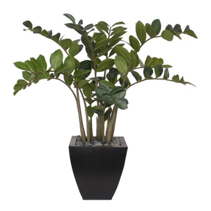 "37""H ZZ Plant with Black Pebbles in a Modern Black Zinc Pot #P-12"