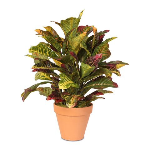 Real Touch Croton Plant in Clay Pot #70D