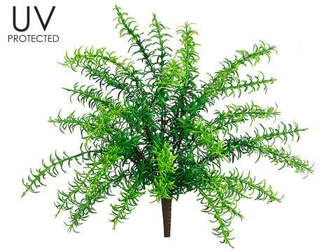 UV Protected Rosemary Bush #PBF430-GR