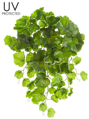 UV Protected Geranium Leaf Bush #PBG320-VG