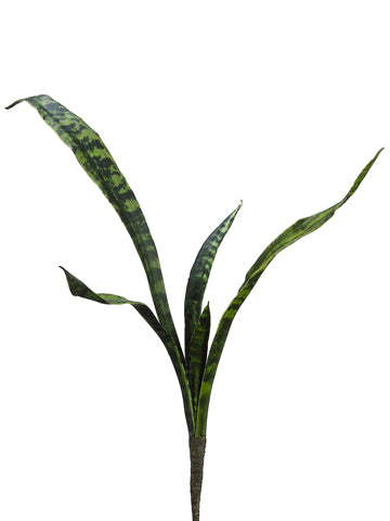 "27"" Mother-In-Law Tongue Plant Two Tone Green #PPM183-GR~TT"