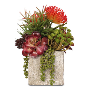 Artificial Jade Plant and Rosette Succulents Coastal Cottage Arrangement in Cement Pot #S-02