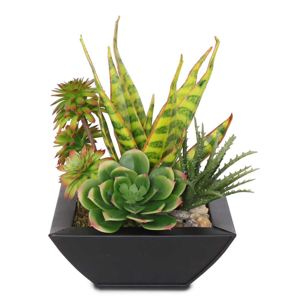 Artificial Tropical Succulents in Black Zinc Metal Pot #S-22