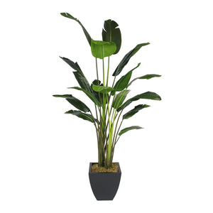 8' Artificial Birds of Paradise Plant in Black Metal Pot #T-104