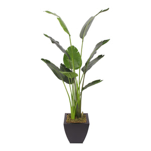 Modern Artificial Bird of Paradise Tree in Square Black Metal Zinc Pot #T-105