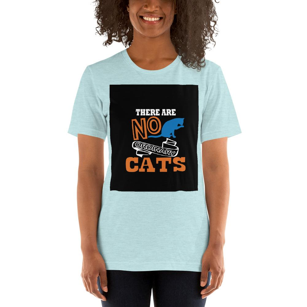 There are no ordinary cats Women's T-Shirts Chiro's Heather Prism Ice Blue XS