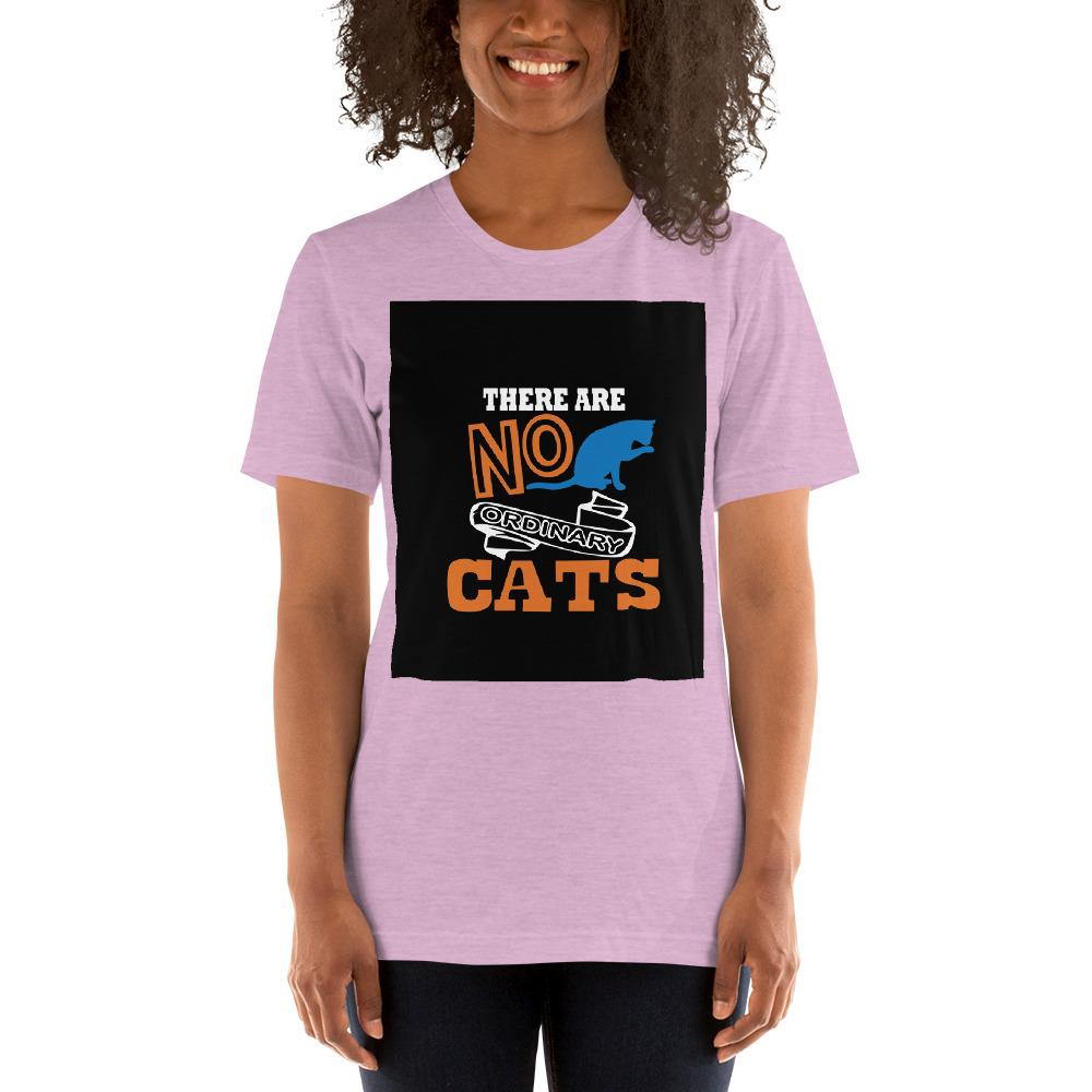 There are no ordinary cats Women's T-Shirts Chiro's Heather Prism Lilac XS