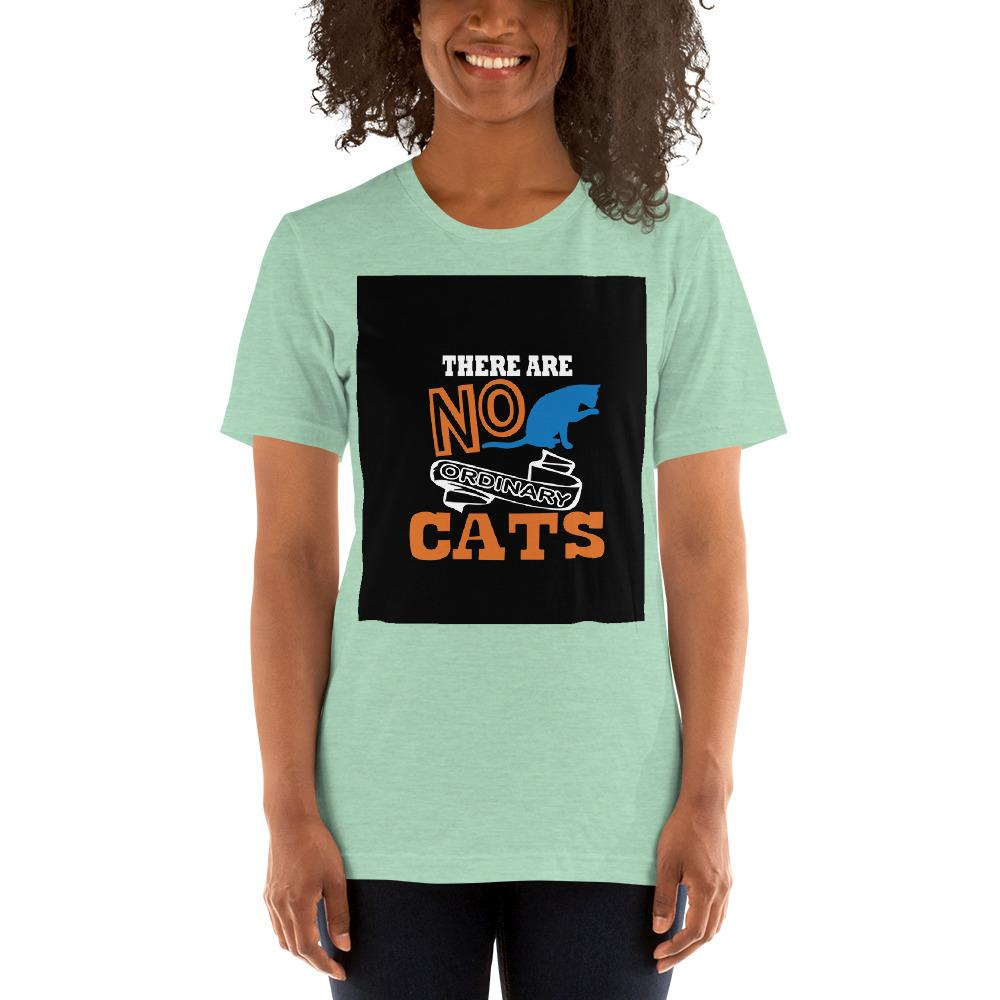 There are no ordinary cats Women's T-Shirts Chiro's Heather Prism Mint XS