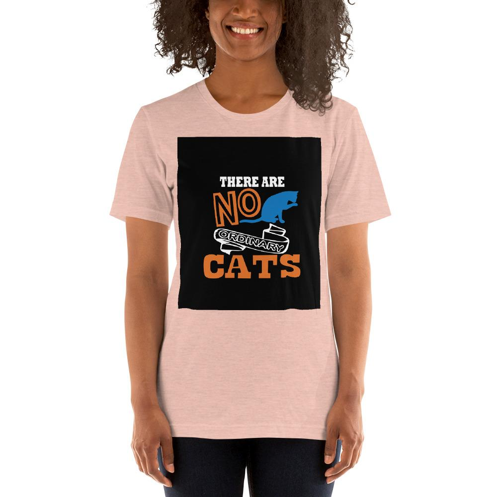 There are no ordinary cats Women's T-Shirts Chiro's Heather Prism Peach XS