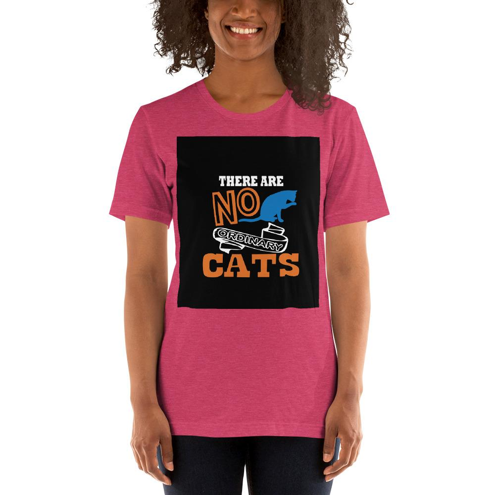 There are no ordinary cats Women's T-Shirts Chiro's Heather Raspberry S