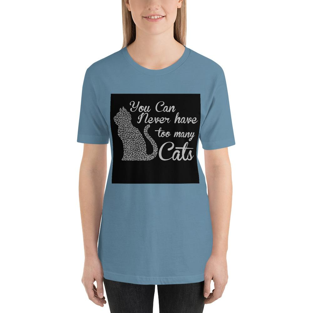You can never have too many cats Women's T-Shirt Chiro's Steel Blue S