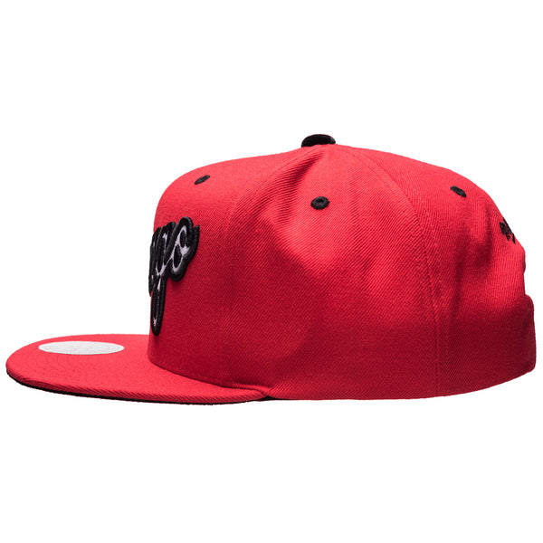 CHI Bull Solid Velour Snapback