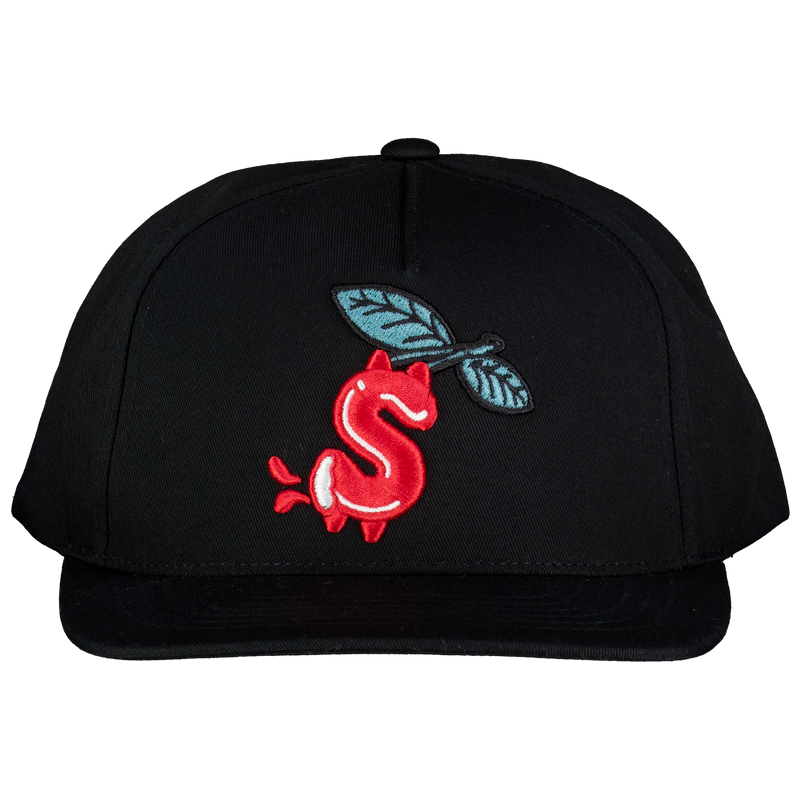MONEY SNAPBACK HAT