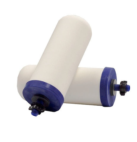 "ProPur 7"" Replacement Filter Pair"